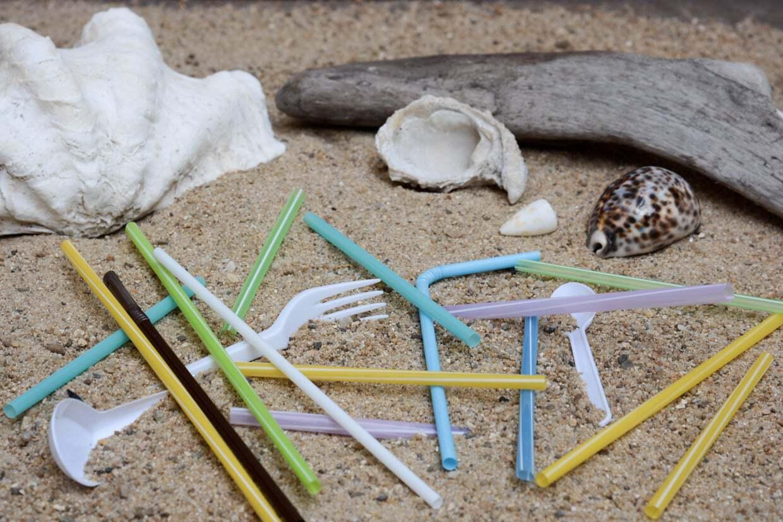 Jednorázové plasty
